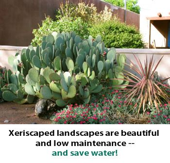 Xeriscaped Landscapes are beautiful and low maintenance and save water